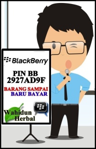 PIN BB GREEN WORD